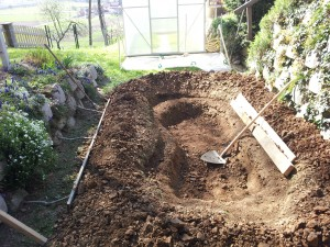 Digging turtle pond