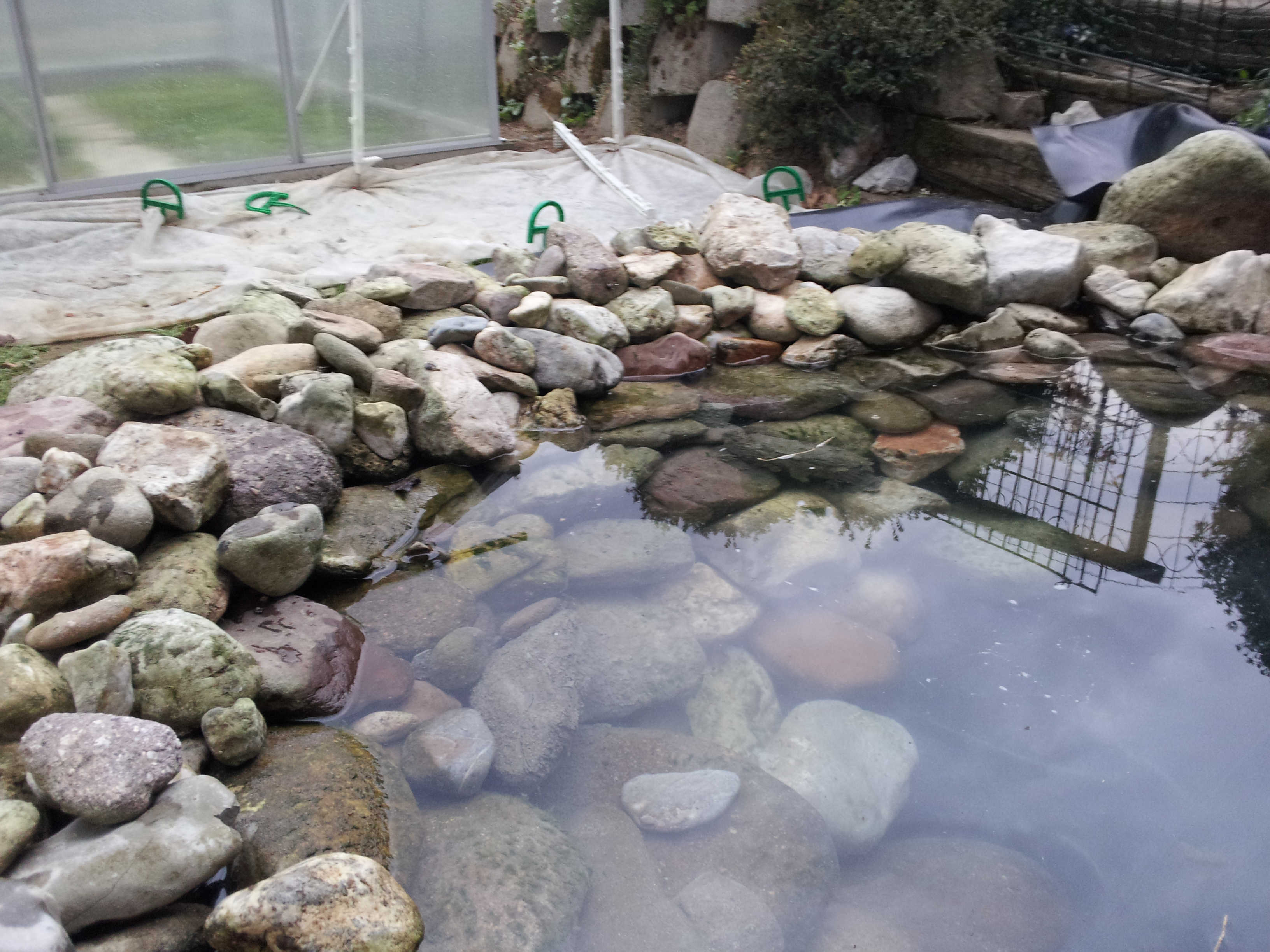How to build a pond info turtle for Best way to build a pond