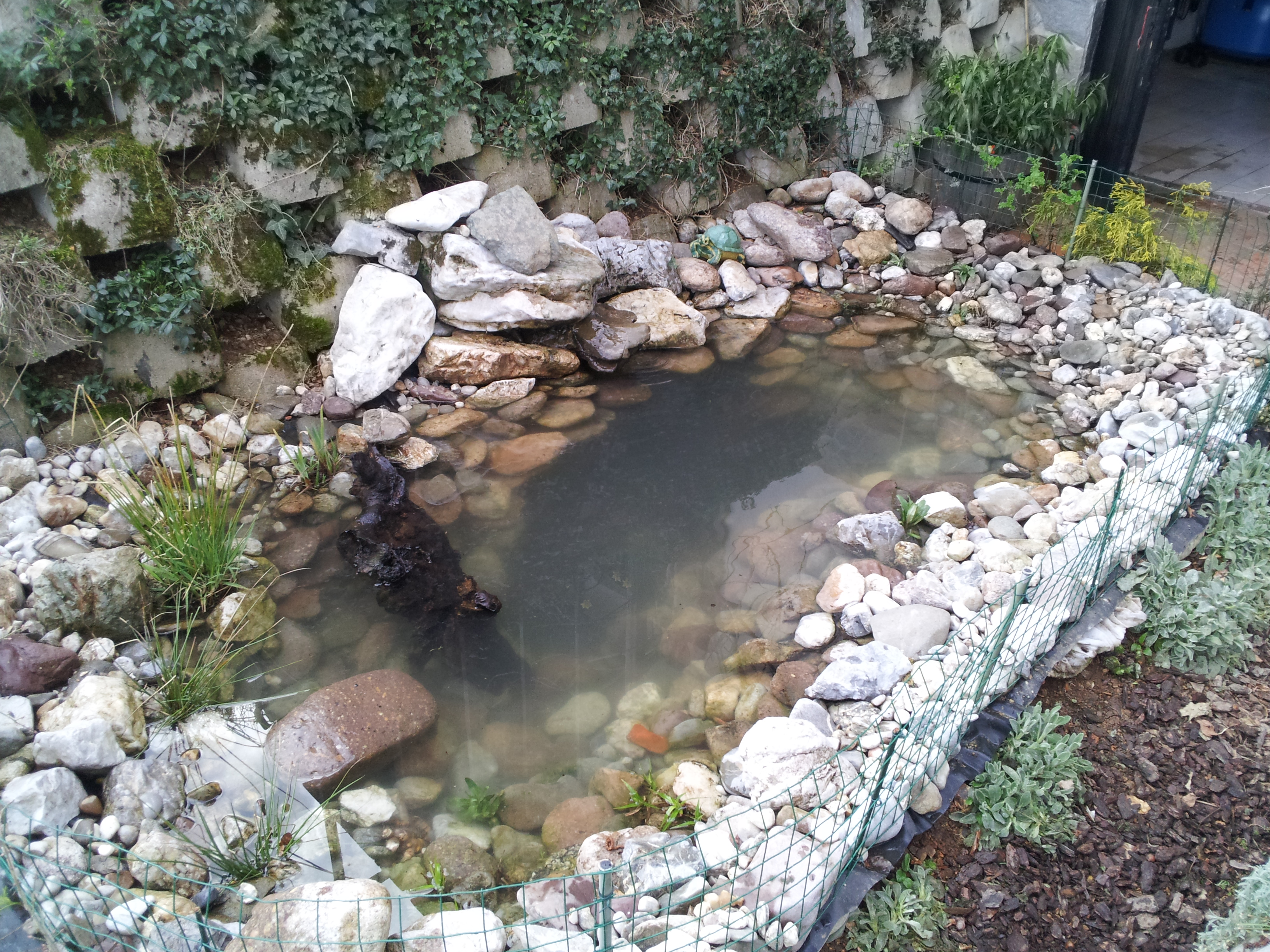 How to make a turtle pond cheap reptile gallery for How to build a koi pond on a budget
